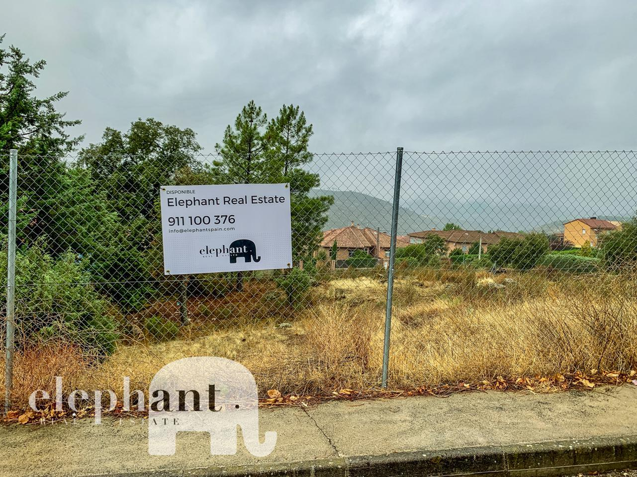 Elephant Real Estate